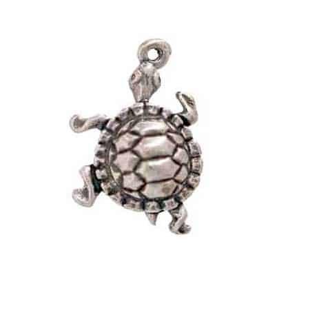 pond-turtle-charm