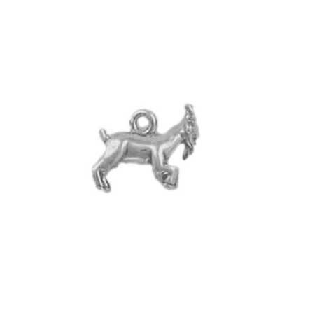 Capricorn Sign of the Zodiac Charm