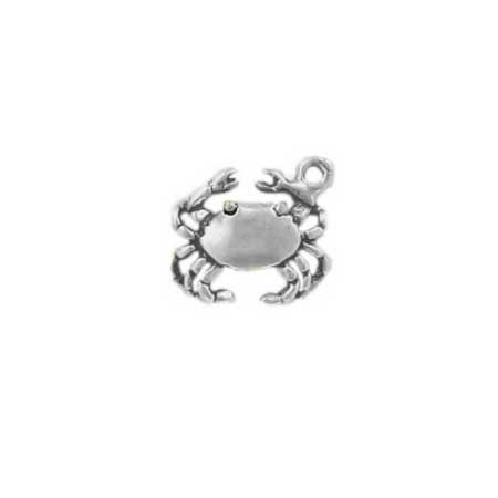 Cancer Sign of the Zodiac Charm